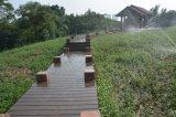 水証拠屋外WPCの固体Decking、高品質ASAはCo突き出た