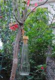 La energía solar Botella de Vino Corcho Muestra gratuita nueva cadena de LED al aire libre Cuento de Navidad de la energía de la luz de Jar de camino a casa camino de la fábrica de Villa Jardín Patio vender a bajo precio