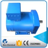 AC Synchrone Alternator stc-50 van de Borstel Draad 100%Copper