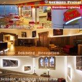Het gespecialiseerde LEIDENE Flex LEIDENE van het Neon Licht van de Strook met Osram Samsung Epistar