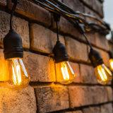 Indicatore luminoso commerciale esterno impermeabile della stringa di E26 24FT LED