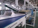 Caso de carga lateral automático Packer Equipo para la harina y polvo envasado Wj-Llgb-15
