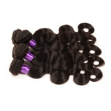 Grade 7A Body Wave Mink Brazilian Hair Wholesale