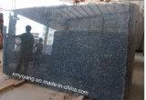 De blauwe Plakken van het Graniet van de Parel voor de Bovenkant van de Ijdelheid, Countertop, Tegels