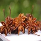 Новую Культуру Китая Star анисовое семя только, звездчатый анис