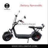 お偉方が付いているWellsmove Harley ELのスクーター1000W Citycocoの電気スクーター