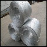 50 chilogrammi della bobina di collegare galvanizzato legame di rinforzo