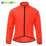 Lady's Cyclisme veste, valeur faible prix, super