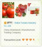 Pasta de tomate em conserva com concentrado duplo 28-30%