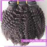 O cabelo da amostra livre empacotado o cabelo Curly Kinky do Afro