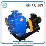 Auto che innesca la pompa ad acqua di irrigazione del motore elettrico della singola fase