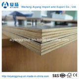 La película hizo frente a la madera contrachapada para la construcción/la madera contrachapada concreta
