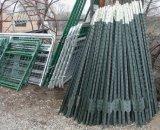 6FTの1.25lbアメリカの緑の塗られた散りばめられた金属Tのポスト