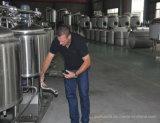 日容量小型ビール電気ビール醸造所のホーム醸造の販売のためのマイクロクラフト装置ごとの100L