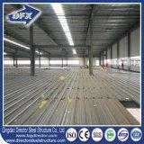 Almacén /Workshop del edificio de la construcción de la estructura de acero
