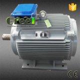 De dubbele Generator Met lage snelheid van de Magneet 220VAC van de Schacht 5kw 200rpm Permanente