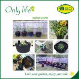 Onlylife fühlte sich im Freien Gemüsegarten-Pflanzer ökonomisch, Beutel zu wachsen