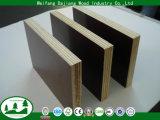a película da alta qualidade de 15mm enfrentou a madeira compensada para a construção