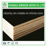 1220x2440x17mm Film enfrenta la madera contrachapada