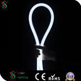 lampe au néon flexible de double face de 230/110/24V DEL
