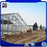 Structure légère en acier préfabriqués pour la Volaille Poulet Shed maison de ferme