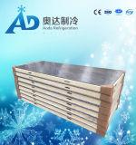 通りがかりのフリーザーによって絶縁される低温貯蔵部屋のパネル