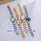 Edelstahl-Uhr passen Dame-Armbanduhren an (WY-018B)