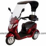 Tres ruedas de bicicleta triciclo motocicleta eléctrica para los adultos con motor