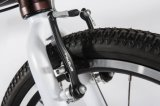 """20 """" 3つは女の子のための鎖のシャフトドライブの自転車の小型Foldable自転車のバイクを促進しない"""