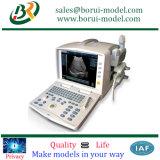 供給の医療機器の急速なプロトタイピング、高品質機械で造る、CNC