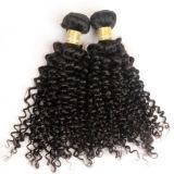 夜通しの出荷10-26inchは巻き毛の織り方の性質のインドの寺院の毛の束Jfy-012を卸し売りする