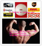 액티브한 약제 99% Dasatinib Monohydrate CAS 863127-77-9