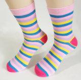 Femme chaussette de l'équipage de chaussettes de chaussettes de coton