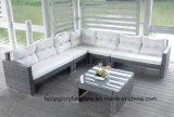 Новые Wicker патио сада/мебель софы ротанга (TG-022)