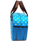 Sacchetto isolato pranzo freddo blu bello della borsa di picnic del dispositivo di raffreddamento