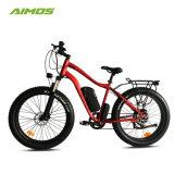 Beach Cruiser Ebike nieve bicicleta eléctrica para adultos