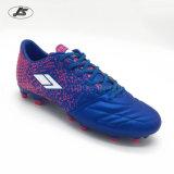 Le football extérieur de qualité chausse des chaussures du football pour les hommes TPU (Zs-004#)
