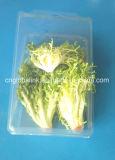 明確で大きいハングのプラスチック野菜包装の容器