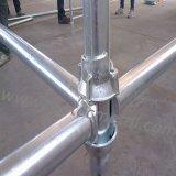 Systeem het van uitstekende kwaliteit van de Steiger Cuplock/van de Steiger