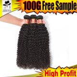毛の拡張のねじれた巻き毛クリップ、9A等級のブラジルの毛の束、ブラジルの人間の毛髪の大きさ