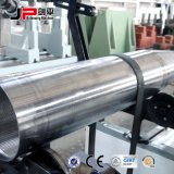 ステンレス鋼のローラー(PHQ-160)のための水平のバランス機械