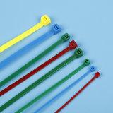 Plastikkabelbinder des freies Beispielnylon-66/Gleichheit-Verpackung