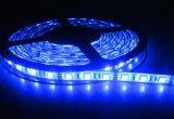 Striscia flessibile calda impermeabile dell'indicatore luminoso di bianco SMD5050 LED del rivestimento parilenico IP66 del fornitore 300LEDs/60LED/M