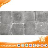 mattonelle di pavimento rustiche del cemento del getto di inchiostro 3D di 600X600mm (JB6015D)
