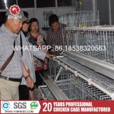 3 et 4 types de rangée de cages d'oiseau