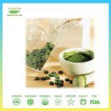 Nahrungsmittelgrad-Grün-Edelstein-Chlorella