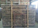 중국 금 해안 대리석 Slabs&Tiles 대리석 Flooring&Walling