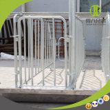 Box de van uitstekende kwaliteit van de Zwangerschap van de Box van het Varken van de Apparatuur van de Landbouw van het Varken