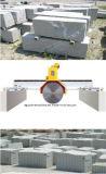 El pórtico vio la máquina grande del cortador de piedra para el bloque del granito del corte en las losas/los azulejos (DQ2500)