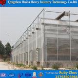 中国の温室のHidroponicaの専門の製造業者からのプラスチックアーチの温室